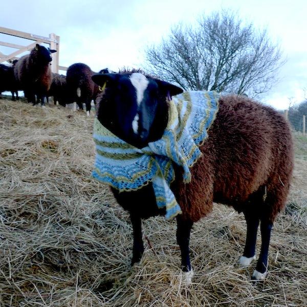 Icelandic Spring shawl Gryla blue