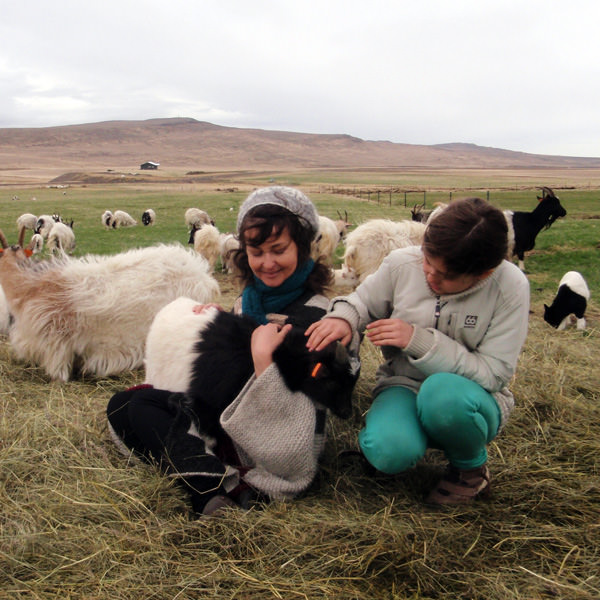 Knitting Vacations Iceland : Spring knitting retreat in icelandic nature may rd th